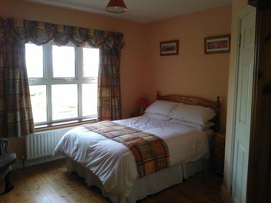Ashville Guesthouse: Double Room
