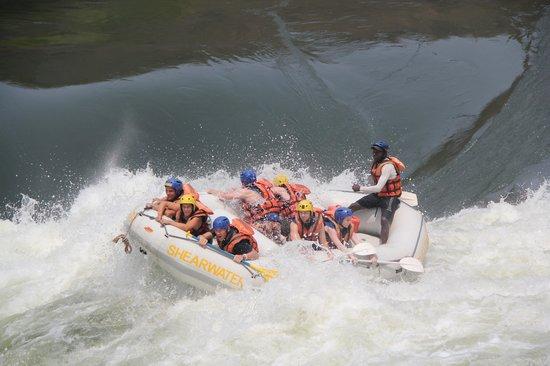 Shearwater Victoria Falls - Bungee, Bridge Tours and Activities: Rapids