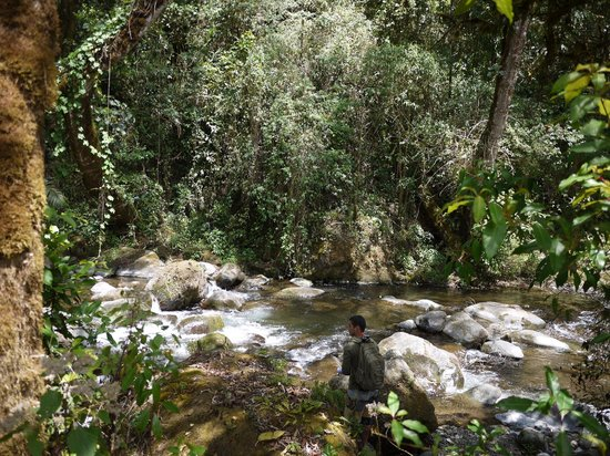 El Manantial Mountain Lodge: The river right across the lodge