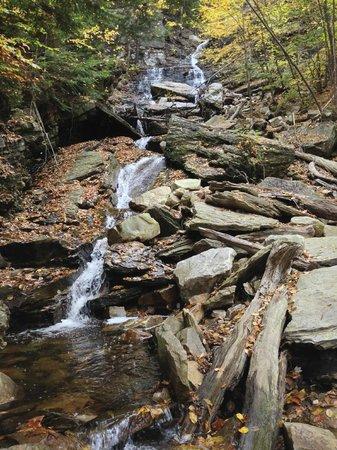 Lye Brook Falls: waterfall