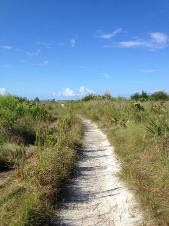 The Inn on Siesta Key: access path to beach