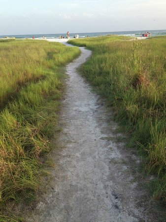 The Inn on Siesta Key: path to beach