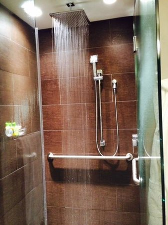 St. Paul Hotel : The shower
