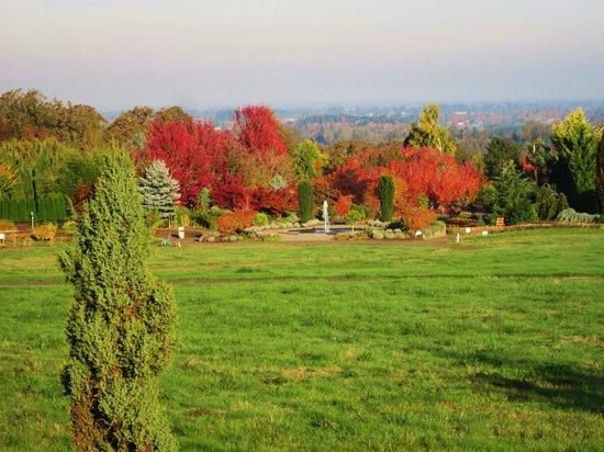 Oregon Garden : Garden view from the resort restarant