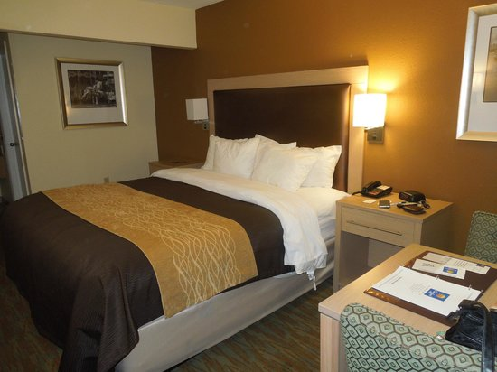 Comfort Inn Beach/Boardwalk Area: King size room