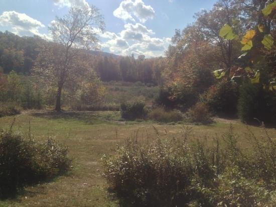West Virginia Botanic Garden : Fall day at the Botanical Garden