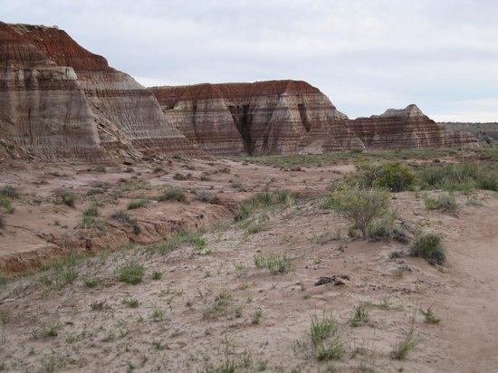 Paria Rimrocks Toadstool Hoodoos: Colorful sedimentary rock layers seen along the trail to the hoodoos.