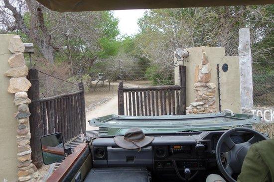 Jock Safari Lodge: Entrada do Lodge à la Jurassic Park