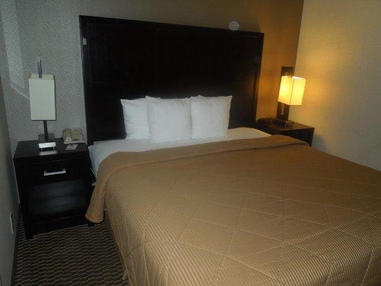 Comfort Inn & Suites Zoo SeaWorld Area: King bed