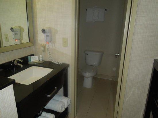 Comfort Inn & Suites Zoo SeaWorld Area: Bathroom