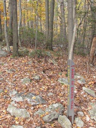 Hawk Mountain Sanctuary: River of Rock Trail Markers