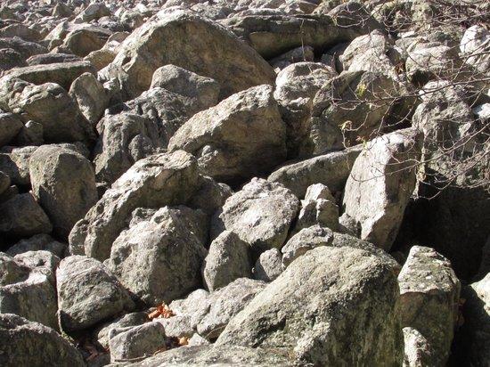 Hawk Mountain Sanctuary : Boulders in River of Rocks