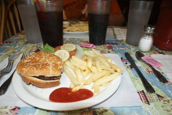 Blondie's Diner : Buffalo Burger and Fries