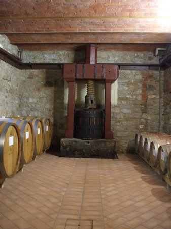 Tuscany Car Tours: Part of our winery tour at Agricola Monterinaldi.
