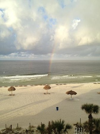 The Watercrest: Early morning rainbow