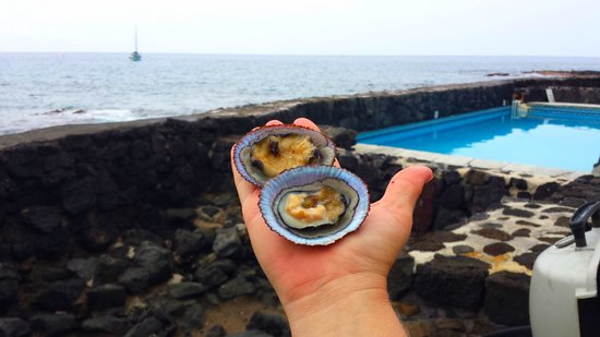 Kona Tiki Hotel: Fresh Opihi from the other side of that rock wall