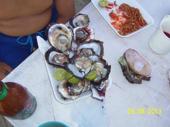 Villa El Arca: Excelente comida