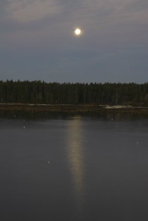 Sebasco Harbor Resort : moon over the water