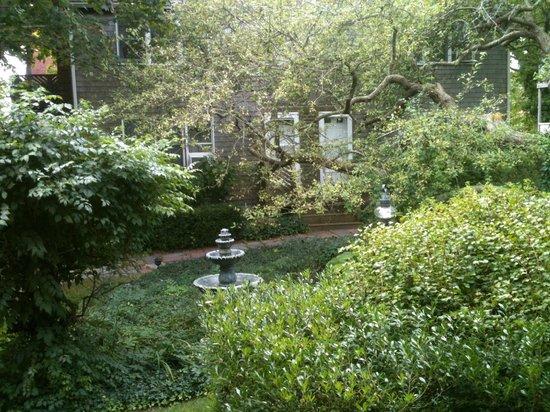 Snug Cottage: Jardim