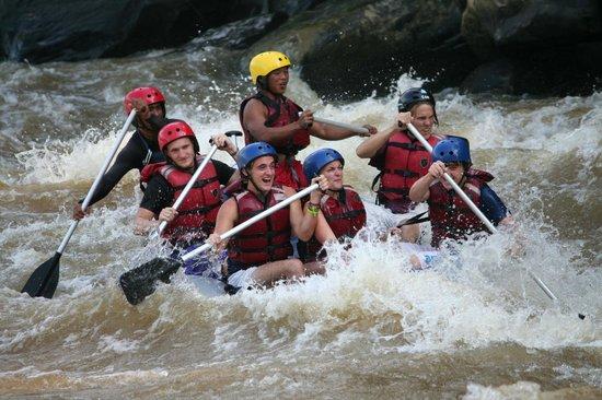 Borneo Wavehunters