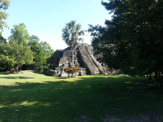 Toucan Tours: Temple