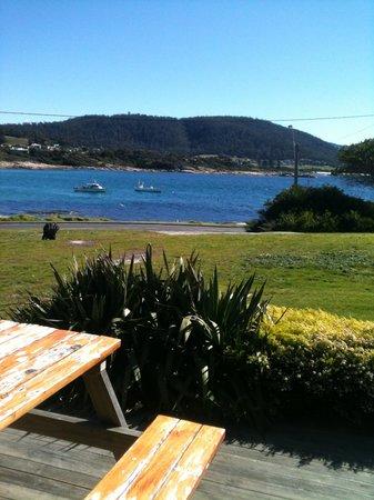 Silver Sands Resort Motor Inn: The view