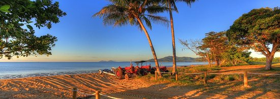 Kurrimine Beach Holiday Park: Famous tractors of Kurrimine Beach