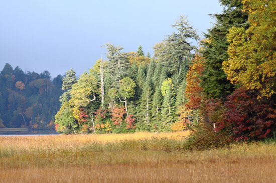 Oze National Park: 黄・赤・緑 美しい景観