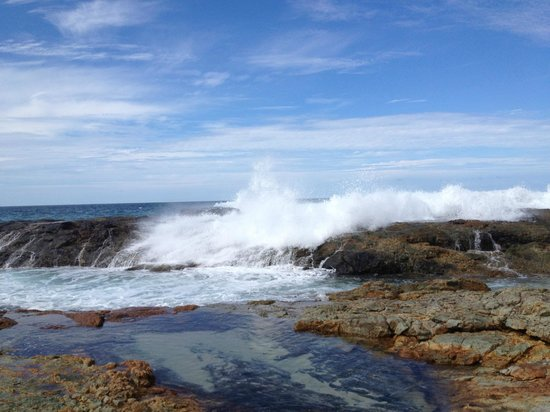 Moreton Island Tourist Services