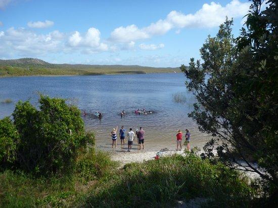 Bulwer, Australia: Blue Lagoon