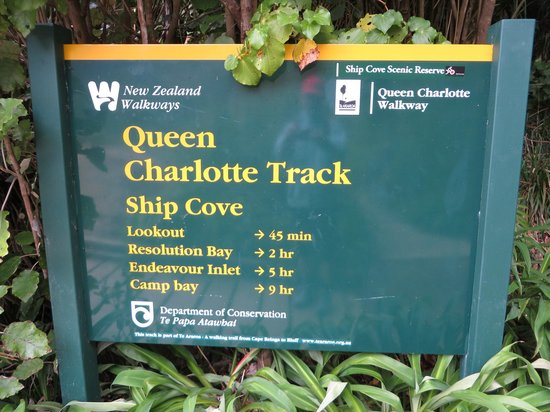 Marlborough Sounds Adventure Company - Day Tours : Queen Charlotte Track