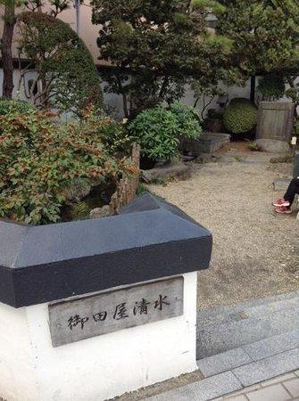 Otaya Shimizu Cold Spring