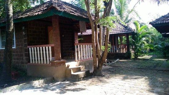 Namaste Cafe: cottages