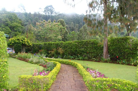 Kelburne Mountain View Cottages: Pathway to Airie