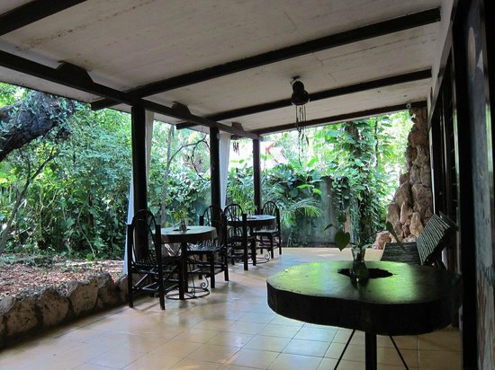 Yaxkin Hostel: outside the bungalow