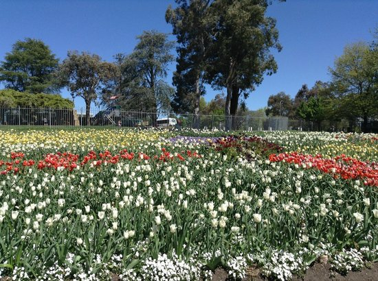 Floriade: Floral display 10