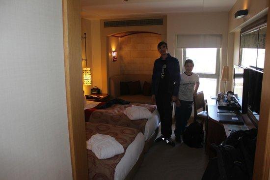 DoubleTree by Hilton Avanos - Cappadocia: A standard room