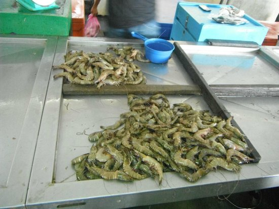 Borneo Seaview Hotel: Prawns from market