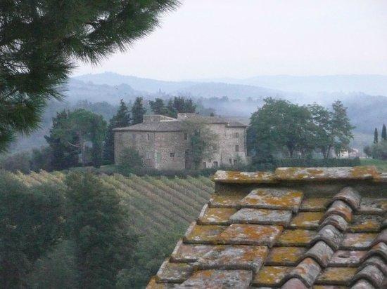 Salvadonica - Borgo Agrituristico del Chianti: View from our window