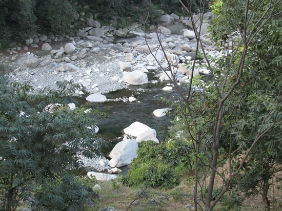 Landscape - Jamwal Villa Homestay: Ravi river view from jamwal villa