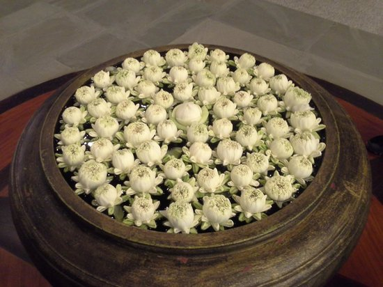 Borei Angkor Resort & Spa: Lotus flowers in the hotel's lobby