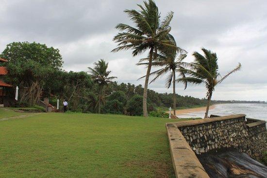 Saman Villas: Garden