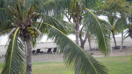Sofitel Fiji Resort & Spa: view onto the beach