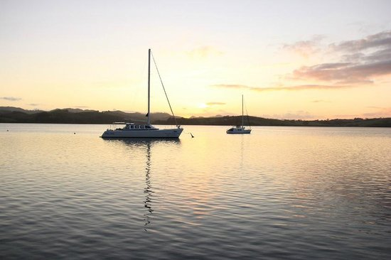 Mangonui Waterfront Apartments: Boats in Mangonui harbour