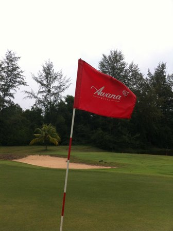 Resorts World Kijal : No cigar, only a birdie at this par 3 hole :)