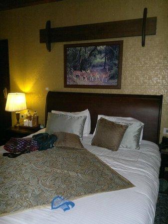 Aahana the Corbett Wilderness: our room