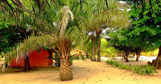 Ezile Bay Village: Bungalow on the beach under the shade of the trees