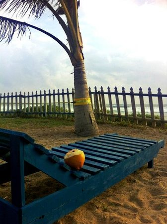 Shaka Sign Surf Camps: Coconut flatrate with sea view