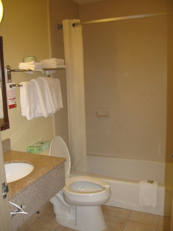 Super 8 Latham/Albany Troy Area: Bathroom