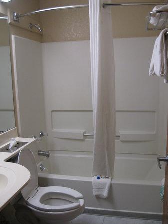 Microtel Inn by Wyndham Henrietta/Rochester: Bathroom View